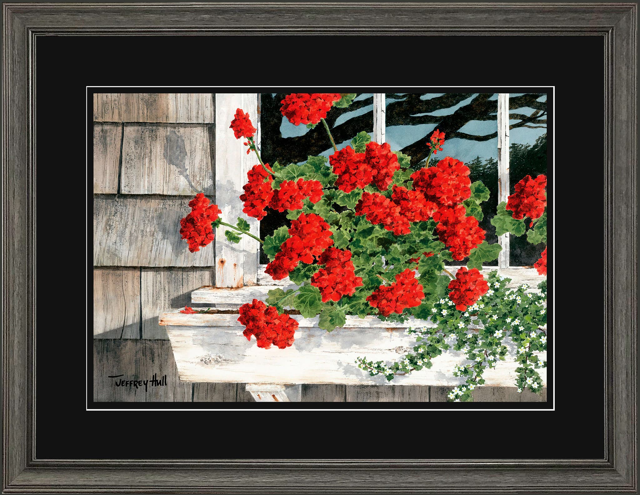 Carol_s-Geraniums-LimEd-Cascade-Jet-Black-4-Website-2021