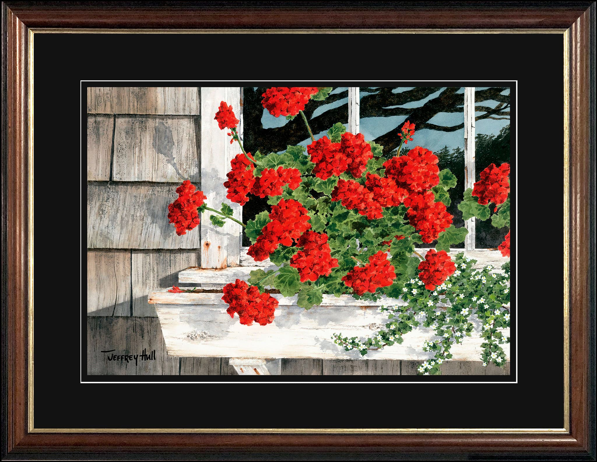 Carol_s-Geraniums-LimEd-Malabar-Jet-Black-4-Website-2021