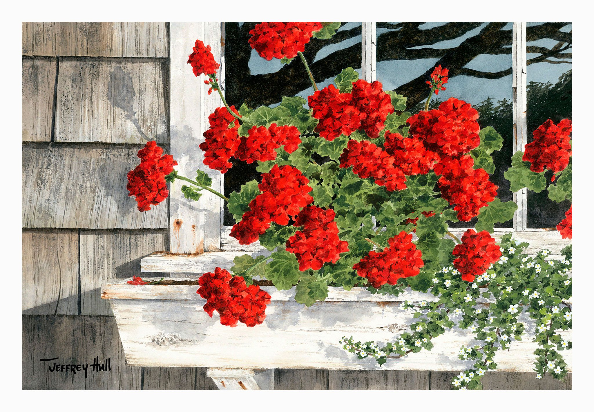 Carol_s-Geraniums-LimEd-Unframed-4-Website-2021