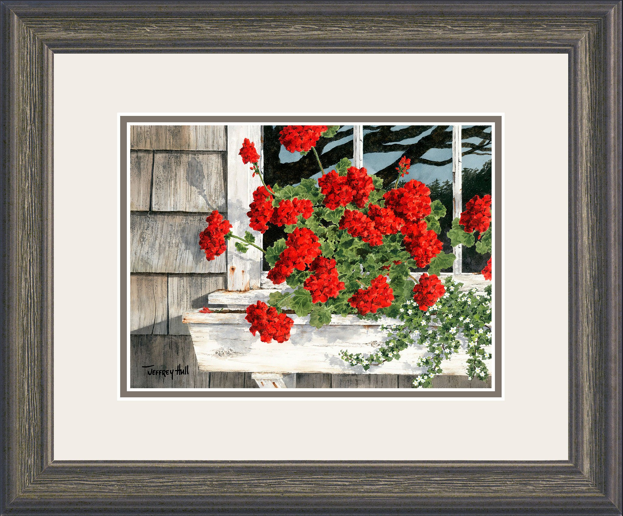 Carol_s-Geraniums-Mini-Cascade-Talc-Balmoral-4-Website-2021