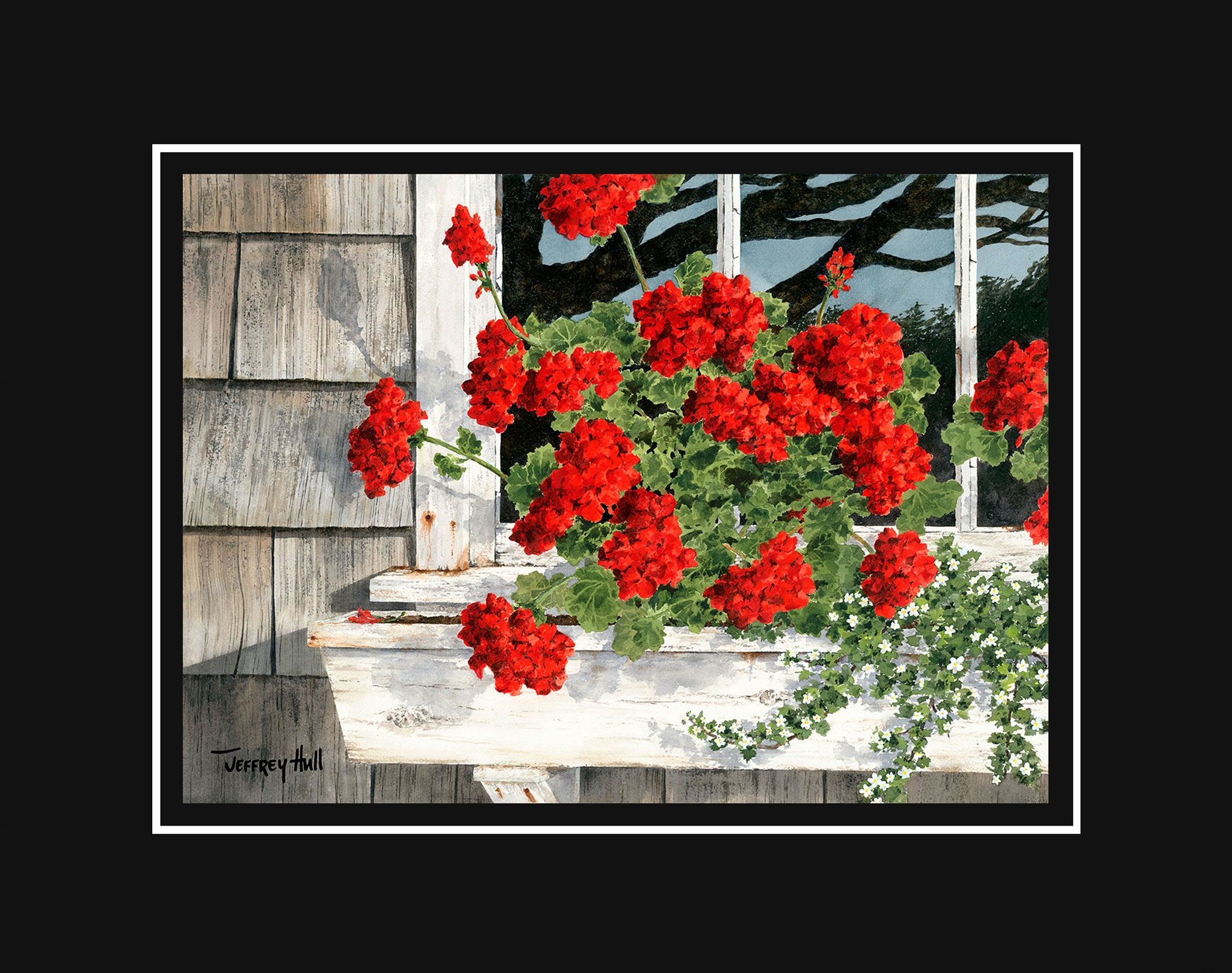 Carol_s-Geraniums-Mini-Unframed-Jet-Black-4-Website-2021