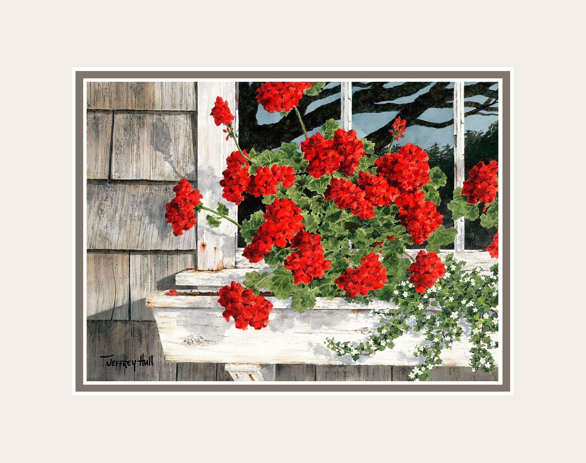 Carol_s-Geraniums-Mini-Unframed-Talc-Balmoral-4-Website-2021