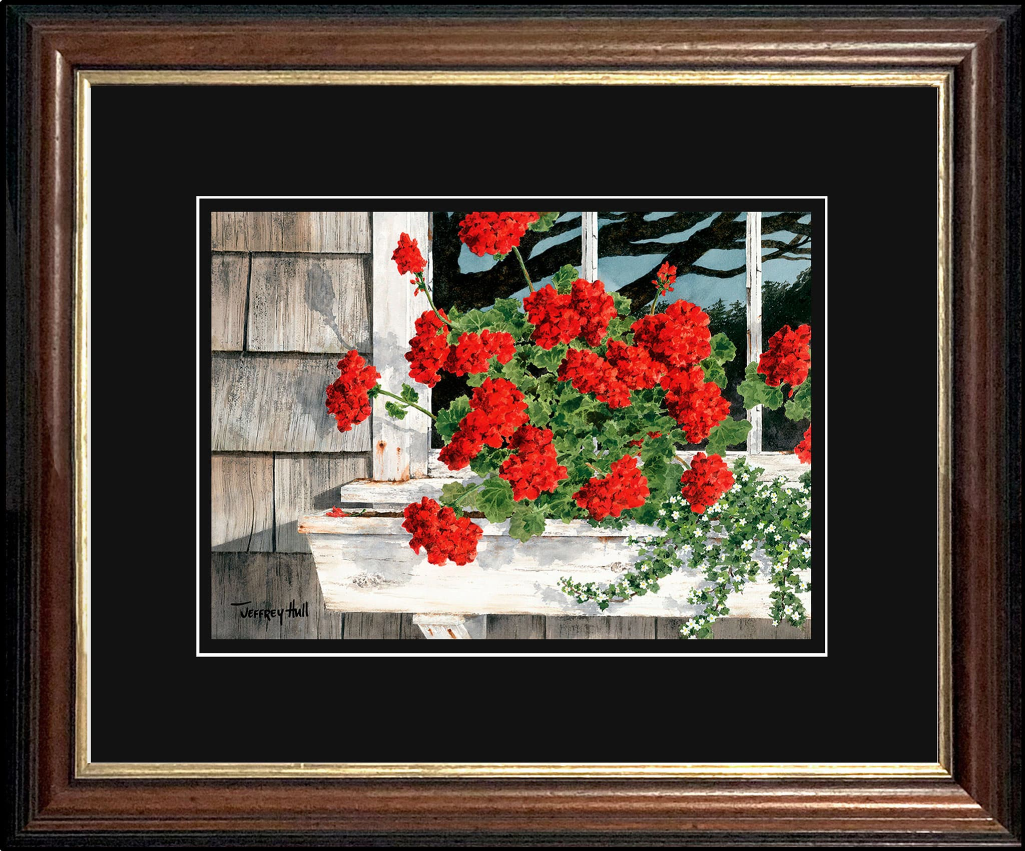 Carol_s-Geraniums-OpenEd-Malabar-Jet-Black-4-Website-2021