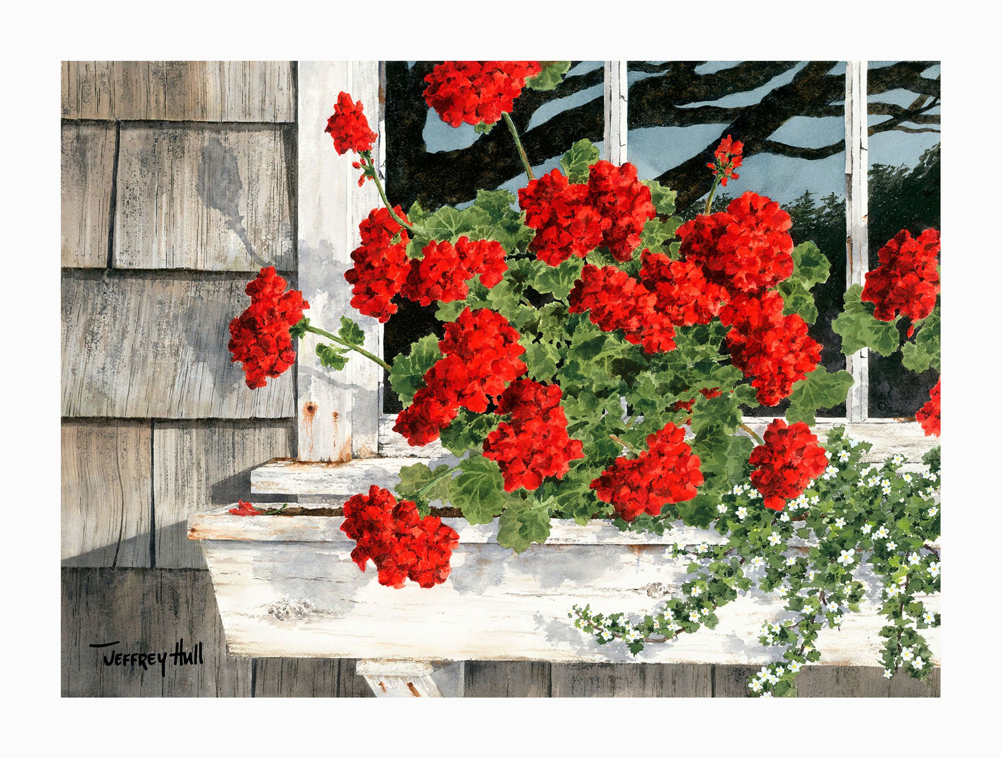 Carol_s-Geraniums-OpenEd-Unframed-4-Website-2021